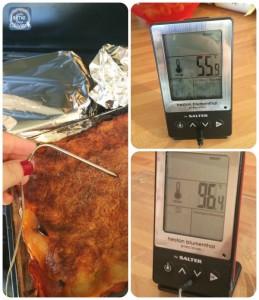 heston thermometer